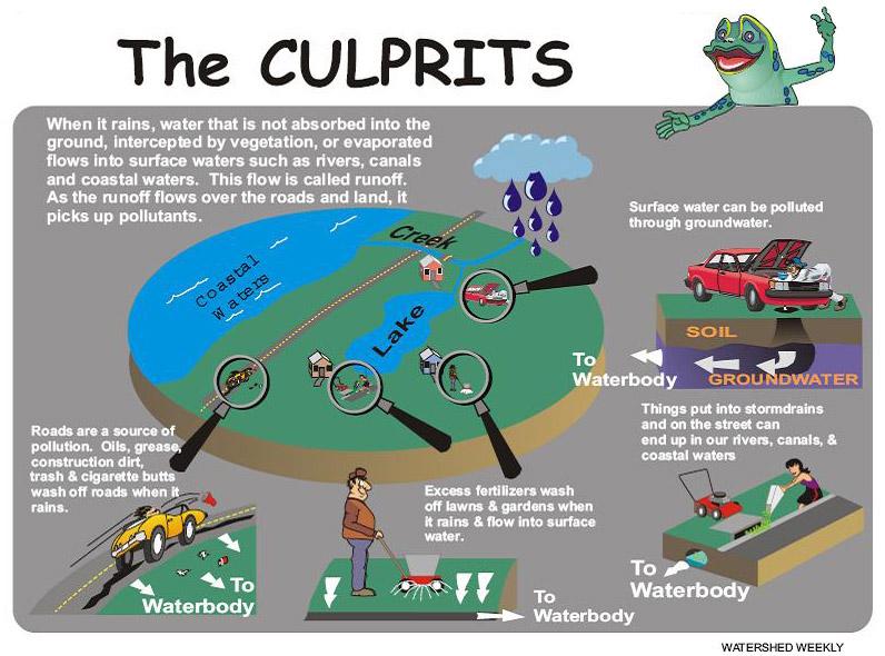 stormwater runoff pollutants illustration